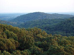 shawnee-national-forest